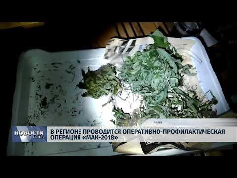 Новости Псков 13.08.2018 # В регионе проводится оперативно-профилактическая операция «Мак-2018»