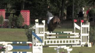 preview picture of video 'horsepro,  Somerset4, Weingarten 1.mov'