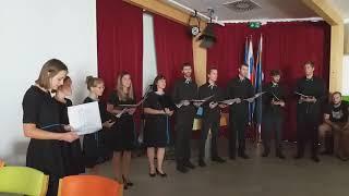 Vokalno instrumentalna skupina Stečine iz Črne na Koroškem
