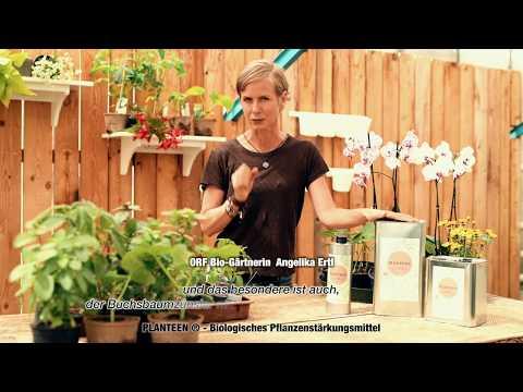 Biogärtnerin Angelika Ertl über PLANTEEN