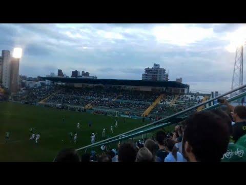 """""""Barra da chape- atrás do gol- Chape X São Paulo"""" Barra: Barra da Chape • Club: Chapecoense"""