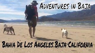 Bahia De Los Angeles Baja California : Adventures in Baja | Overlanding Baja
