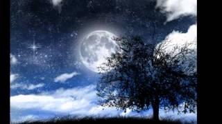Starry Night  - iNSTRUMENTAL sHREK