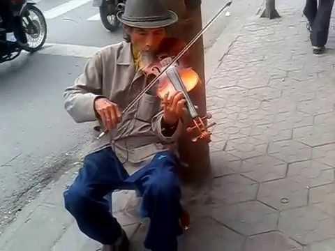 Ông cụ kéo vĩ cầm ở thành phố cảng