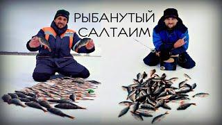 Отчеты о рыбалке салтаим омская область рыбалка
