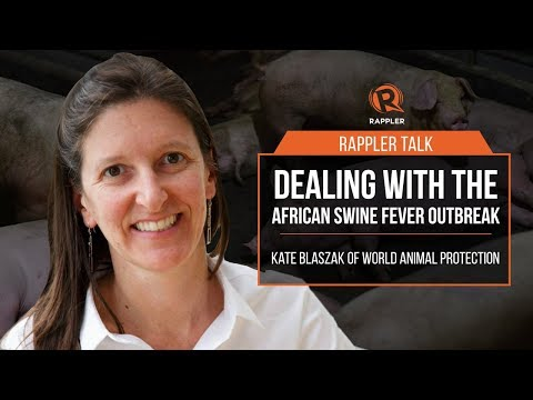 , title : 'Rappler Talk: Dealing with the African swine fever outbreak