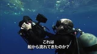 プラスチックの海(原題 A PLASTIC OCEAN ) – 映画予告編