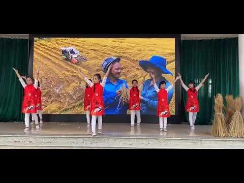5A7 -2020-2021=Múa Mushup: Hạt gạo làng ta- Em đi giữa biển vàng
