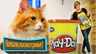 КОТИКИ и Маша Капуки - Играем с Плей До - Кошачье кафе