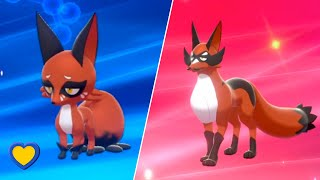 Thievul  - (Pokémon) - Nickit evolves into Thievul in Pokemon Sword and Shield