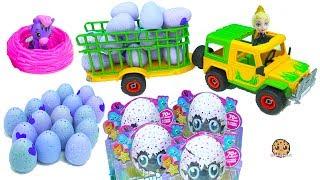 Truck Of Hatchimals Hatching Surprise Blind Bag Baby Animal Eggs with Queen Elsa