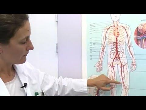 Gürtel Schmerzen im Bauch und Rücken