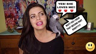 Should You Clip Your Parrots Wings? |PARRONT TIP TUESDAY