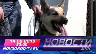 Прямой эфир: Новости дня в 20:00 14.08.2019 г.