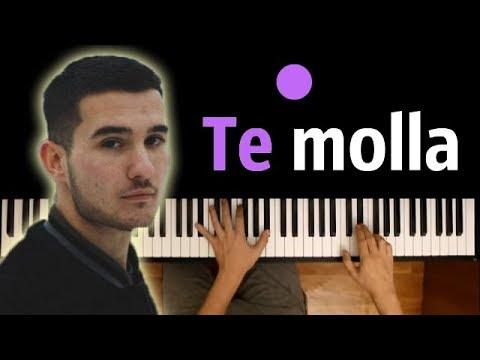 Arnon - Te Molla (feat. Killua) ● караоке | PIANO_KARAOKE ● + НОТЫ & MIDI