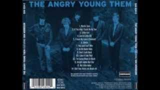 Them - The Angry Young Them - If You And I Could Be As Two (1965)