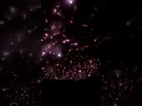 Starry Effect Fiber Optic Light
