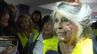 Brigitte Bardot, Invitée-surprise Dune Réunion De Gilets Jaunes Dans Le Var