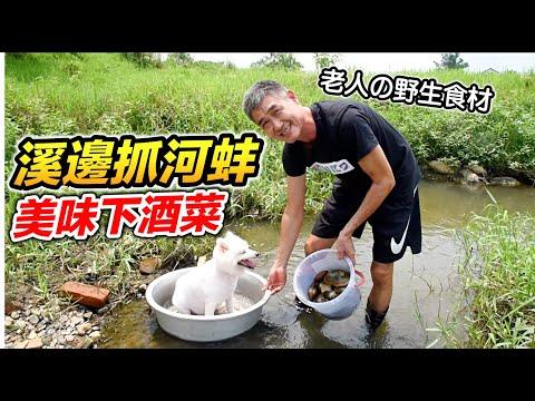 老人與狗 河邊美食 帶著狗抓河蚌 先抓現吃 好不好吃呢