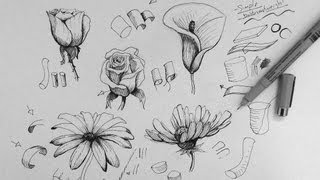 Pen & Ink Drawing Tutorial   How To Draw Flowers Part 1