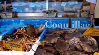 Bretagne Crozon: Meeresfrüchte auf einem Wochenmarkt