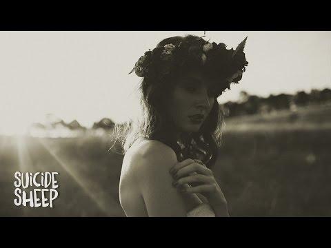 Skott - Amelia