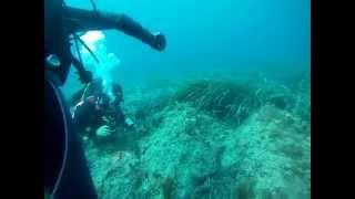 preview picture of video 'Immersione Didattica Isola delle Femmine - Brevetto FIPSAS-CMAS - HD'