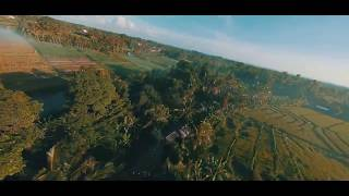 FPV: Fly in the High Wind