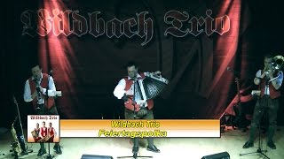 preview picture of video 'Wildbach Trio Feiertagsploka (Europasaal Weiz)'