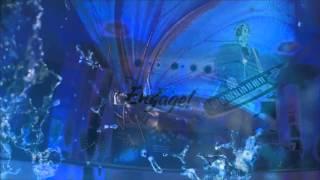 DiscoBonus--Fire of Love--DJ Ikonnikov RMX--2015