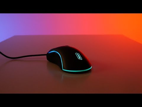 Best Deal on Amazon – Hiraliy F300 Gaming Mouse Review