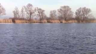 preview picture of video 'Naturschutzgebiet Hockenheimer Rheinbogen, am Silzgraben (Aufn. Jan. 2014)'