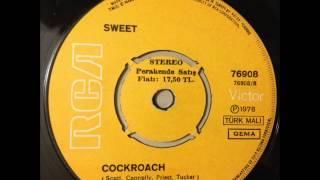 Cockroach - Sweet