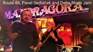 Pavel Sedláček and Delta Blues Jam New York Prague - ROUTE 66