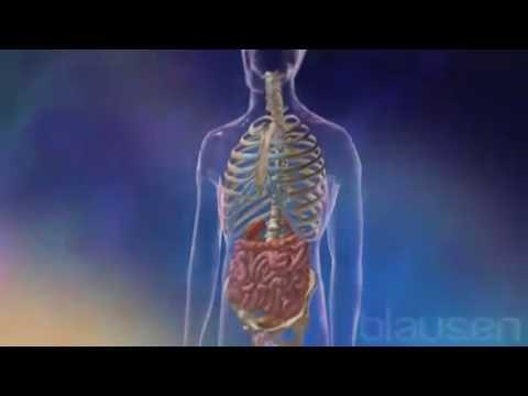 Médicaments pour le cancer de la prostate