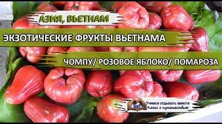 Донна каран розовое яблоко