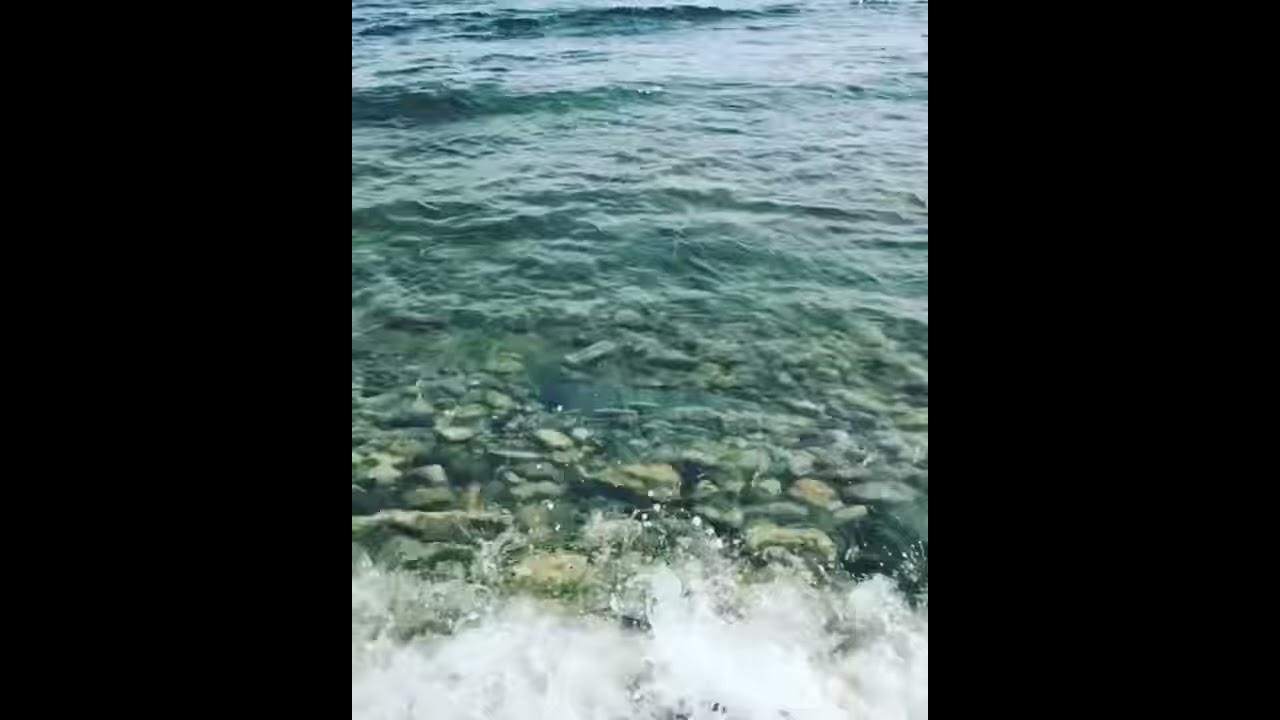 Видео в кемпинге Солнечный