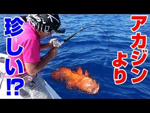 UVERworldの皆さんに沖縄で釣った魚を届ける‼#2