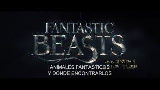 Tráiler Inglés Subtitulado en Español Fantastic Beasts and Where to Find Them