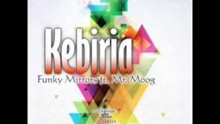 Funky Mirrors ft. Mr. Moog - Kebiria