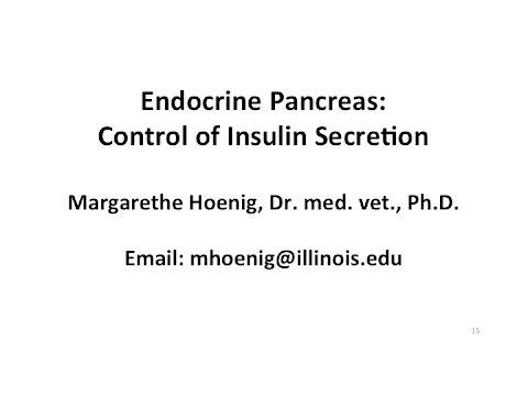 Manger des cerises dans le diabète
