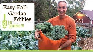 Easy Edibles for Every Fall Vegetable Garden