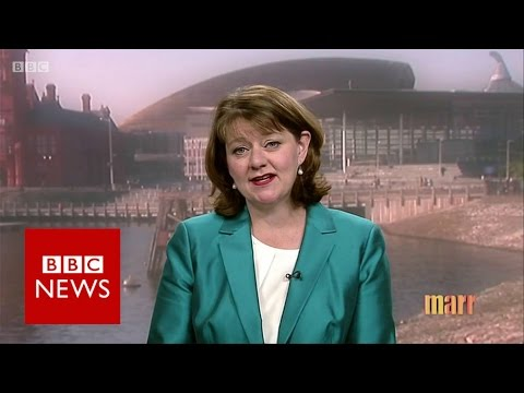 Leanne Wood on Brexit and General Election - BBC News