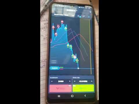 Review about 24 binary options
