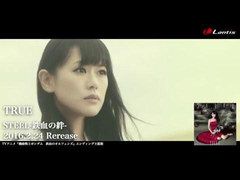 TRUE / STEEL -鉄血の絆- - MV Short Ver.