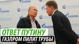 Ответ Путину.  Газпром пилит трубы
