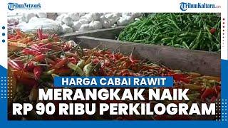 Harga Cabai Rawit di Pasar Gusher Tarakan Merangkak Naik, Rp 90 Ribu Per Kilogram