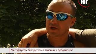 БЕРДЯНСК 2018 опрос СОБАКИ 2018 07 18