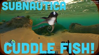 Where is the cuddlefish egg - Free video search site