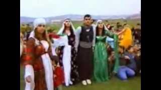 Koma Rozerin - Naze Naze  Gule Gule
